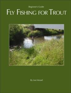 Beginner's Guide to Fly Fishing for Trout